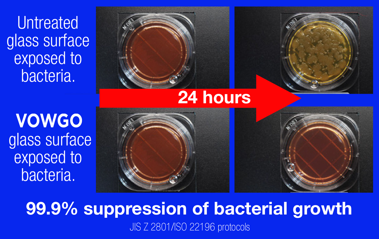 VOWGO suppresses bacterial growth 99.9%